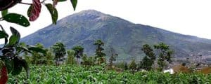 merbabu volcanoes, merbabu mount, mountain