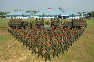 national army forces, tni, navy, air forces