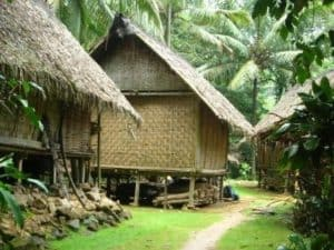 indonesia, traditional house, houses