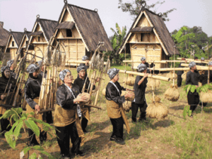Tribe, traditional, indonesia, culture, ethnic