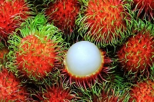 10 Local Types of Rambutan in Indonesia