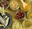 Top 15 Indonesian Herbal Medicine – Benefits