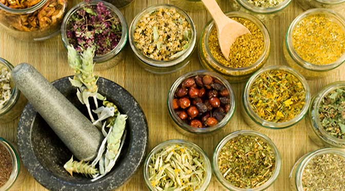 Top 15 Indonesian Herbal Medicine – Benefits