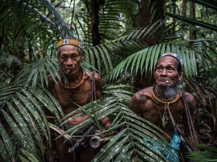 8 Indigenous Tribes of Indonesia – Characteristics