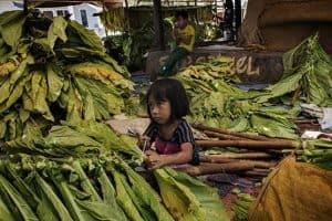 Children Labour in Indonesia  – Solutions
