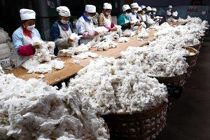 Indonesia Cotton Fabric - Making Process - Places - Facts of