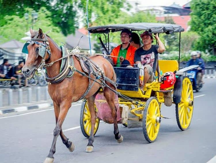 13 Traditional Vehicles in Indonesia
