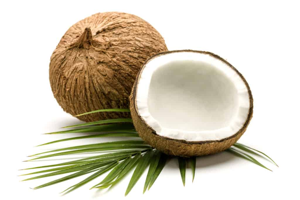 west java coconut