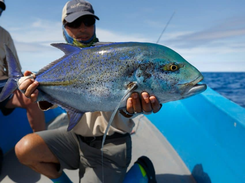 17 Best Fishing Spots in Indonesia That People Should Try