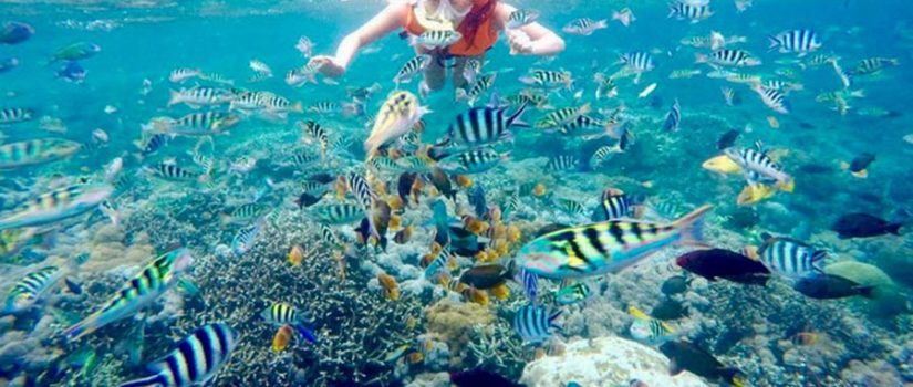 13 Best Beaches in Bali for Snorkeling