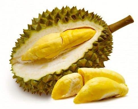 10 Local Types of Durian in Indonesia