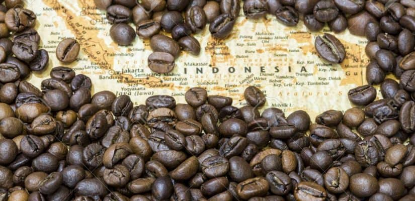 15 Types of Indonesian Coffee Beans