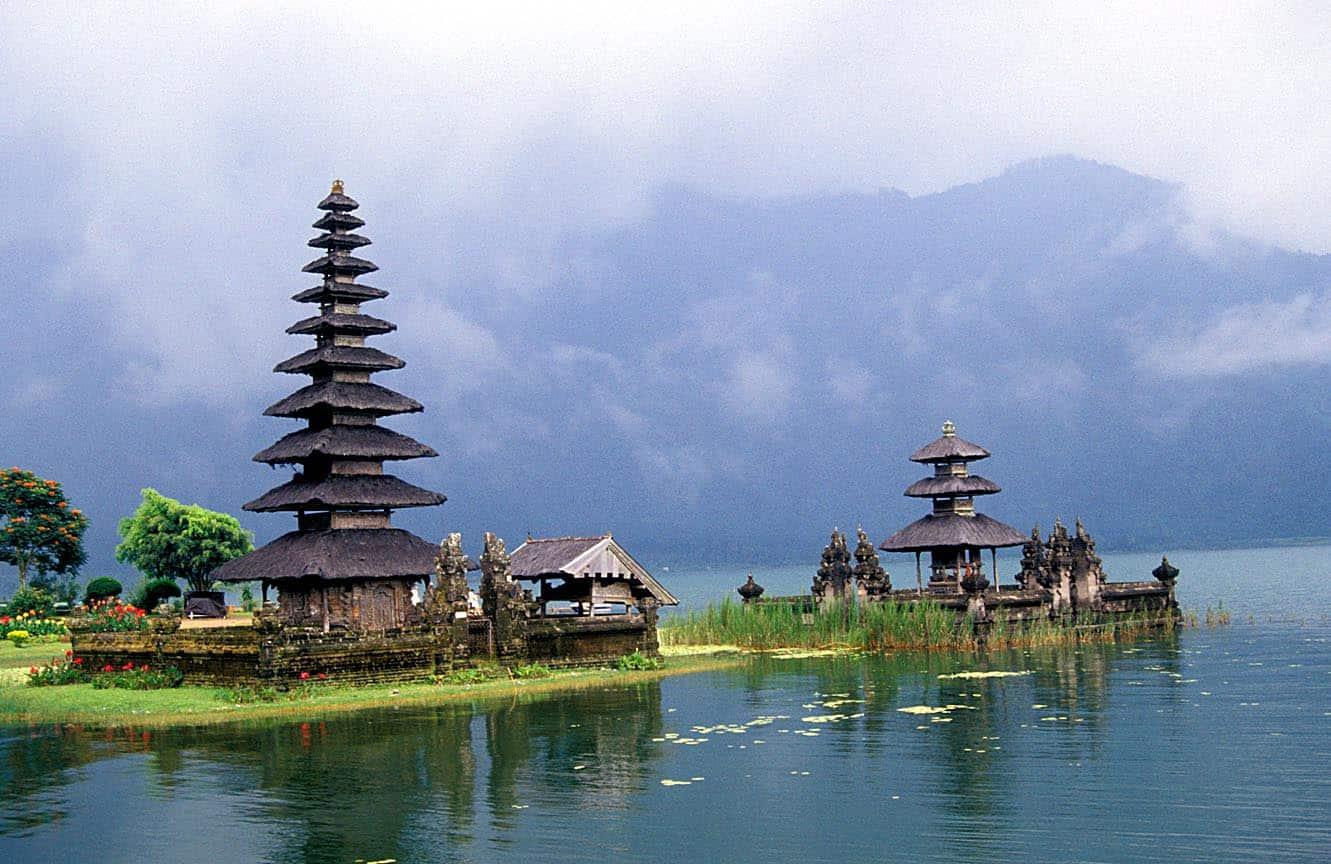 Картинки индонезия бали, кошка своими