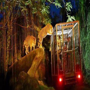 Bali Zoo Gianyar Bali