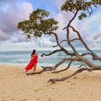 Sereni-Tree di Serenity Beach, Hilton Bali Resort