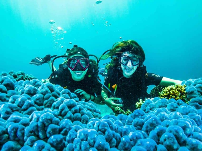 14 Tips to Do Scuba Diving in Gili Trawangan Indonesia – All You Need to Know