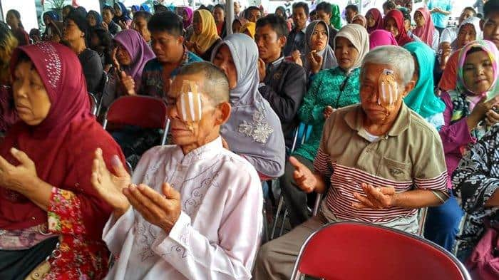 The 13 Causes of Low Vision and Blindness in Rural Indonesia : Social and Medical Approaches