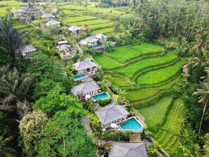 The landscape of Ubud