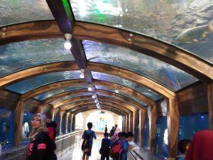 Taman Akuarium Besar Purbasari
