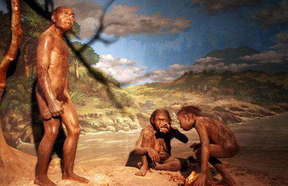Prehistorical Sites in Indonesia
