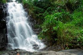 Jarakan Waterfall