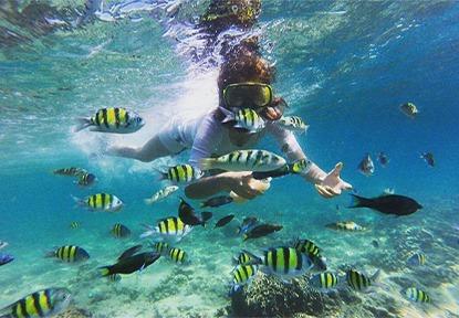 Nias and Mentawai Island