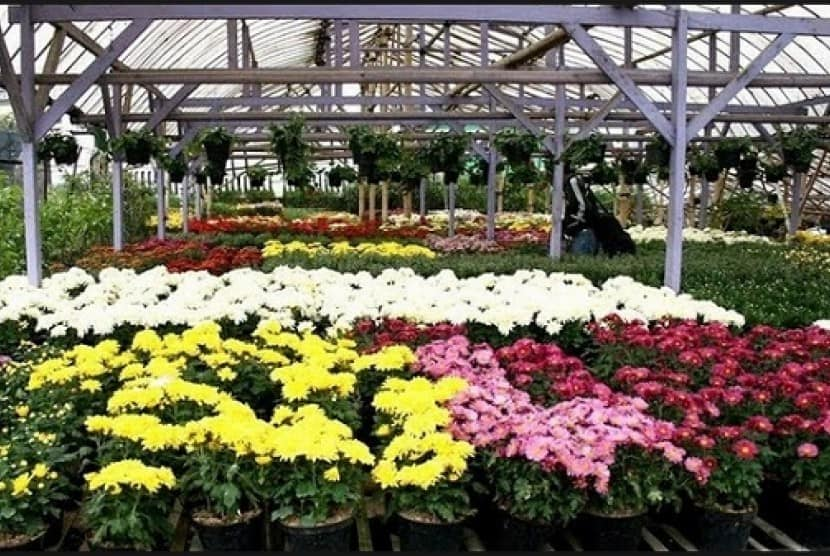 Cihideun Flower Garden