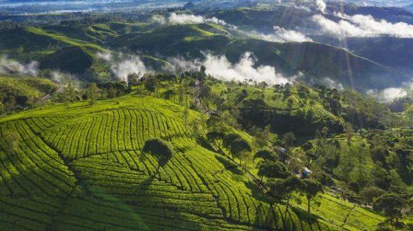 virtual tour in indonesia